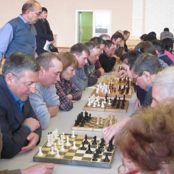 Шахматы 005